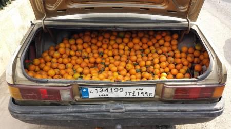 Tripoli - Venditori di arance