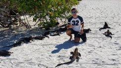 Tra le iguane marine