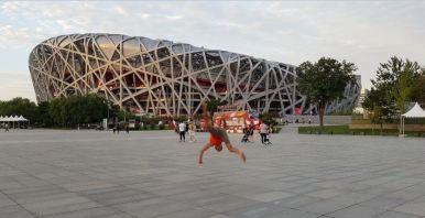 The Nest Stadium