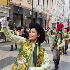Fiesta Santa Rosa da Lima